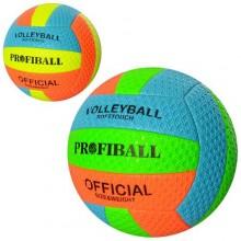 Волейбольный мяч EN 3208